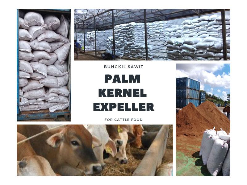 Palm-Kernel-Expeller